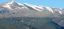 Jóvenes andaluces participarán en Sierra Nevada en un campo de voluntariado para la conservación de la fauna