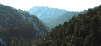 Medio Ambiente inicia el campo de voluntariado del Parque Natural Sierra de Huétor en Granada