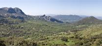 Medio Ambiente actualiza en su web la cartografía del Catálogo de Montes Públicos de Andalucía