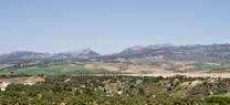 El Consejo de Gobierno acuerda iniciar el nuevo plan de ordenación de la Sierra de las Nieves para lograr su declaración como Parque Nacional