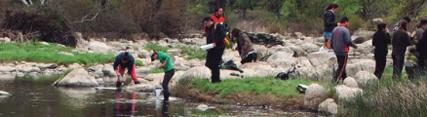 Medio Ambiente abre el plazo para participar en el programa de voluntariado ambiental 'Andarríos'