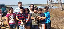 La reintroducción del águila pescadora fija un nuevo hito en Huelva con su séptima pareja reproductora