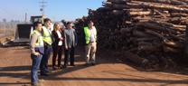 Serrano destaca que el desarrollo del sector energético de biomasa en Andalucía ha creado cerca de 1.000 empleos
