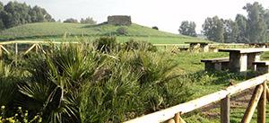 Medio Ambiente finaliza los trabajos de adecuación del Corredor Verde del Guadaira