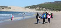 Cerca de 5.000 escolares recorrerán varias playas andaluzas para conocer su situación ambiental