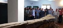 Medio Ambiente inaugura la dotación interpretativa del tronco fósil del Viar en el Centro de Visitantes Cortijo El Berrocal