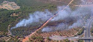 El consejero de Medio Ambiente asegura que la mano del hombre está detrás del incendio del paraje de El Rincón