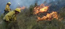 La Junta pide a agricultores y particulares extremar la precaución en quemas agrícolas o forestales