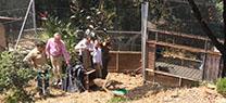La Junta cede dos linces ibéricos al Parque Selwo Aventura