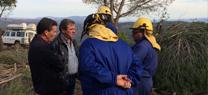 Medio Ambiente abre un cortafuegos en Chiclana de Segura en actuaciones preventivas contra incendios