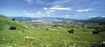 La Junta impulsa la elaboración del II Plan de Desarrollo Sostenible del Parque de las Sierras Subbéticas