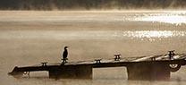 Medio Ambiente concede los premios de la segunda edición del certamen fotográfico 'Mayores por el Medio Ambiente'