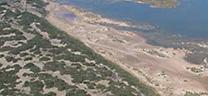 Medio Ambiente abre el trámite de información pública para declarar Zona Especial de Conservación a Punta Entinas-Sabinar