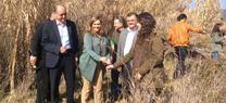 Medio Ambiente organiza con la Universidad de Córdoba una reforestación participativa en el Arroyo Rabanales