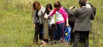 Medio Ambiente consolida las poblaciones de lince ibérico con 327 ejemplares censados en Andalucía en 2014