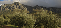 Evaluadores de la Red de Geoparques visitan las Sierras Subbéticas para revalidar su título