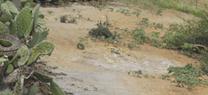 Entra en vigor el reglamento de suelos contaminados de Andalucía
