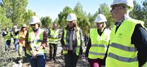 Ocho montes públicos de Granada reciben tratamientos selvícolas para la prevención y lucha contra los incendios forestales