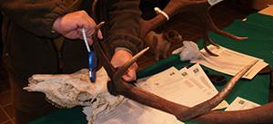 Medio Ambiente organiza un curso de formación para obtener la categoría de juez homologador de trofeos de caza en Andalucía