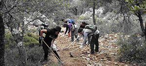 Voluntarios ambientales de Sierra Mágina recuperan la antigua vereda de acceso al Hoyo del Quejigo en el Parque Natural