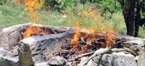 Medio Ambiente informa que durante la época peligro alto de incendios quedan prohibidas las barbacoas y quemas agrícolas
