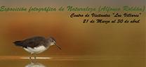 La Junta de Andalucía celebra el Día Internacional de los Bosques con una serie de actividades
