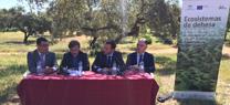 Junta y sector analizan los últimos avances del Plan Director de la Dehesa, dirigido a asegurar el futuro de este ecosistema