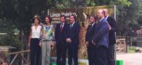 La Junta de Andalucía cede dos ejemplares de lince ibérico al zoo Aquarium de Madrid para fines educativos