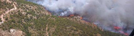 José Fiscal anuncia nuevas medidas para reforzar la regeneración natural de la zona afectada por el incendio de Quesada