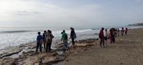 Más de 1.500 escolares participan en Almería en el Programa de la Junta 'Cuidemos la Costa. Proyecto Correlimos'