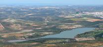 La Junta celebra el día del Medio Ambiente con unas actividades en la Laguna de Zóñar