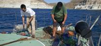 Agentes de Medio Ambiente decomisan artes de pesca prohibidas en el Parque Natural Cabo de Gata-Níjar