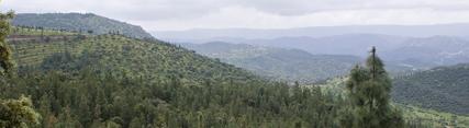 La Junta inicia el Plan de Desarrollo Sostenible del Parque Natural de la Sierra de Hornachuelos