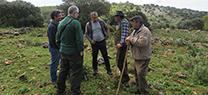 Investigadores de la Universidad de Extremadura se interesan por el proyecto andaluz Red de Áreas Pasto-Cortafuegos