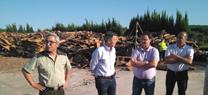 San Roque vive el comienzo de los trabajos de descorche en los montes públicos de la Junta de Andalucía