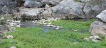 La Junta sanciona al titular de una finca de Tabernas por extraer agua subterránea sin autorización