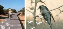 Andalucía se sitúa a la cabeza entre las comunidades españolas con más superficie de espacios naturales protegidos