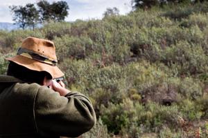 Medio Ambiente aprueba la Orden General de Vedas para las próximas temporadas cinegéticas en Andalucía