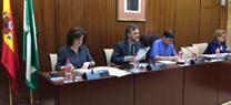 Comisión Parlamento