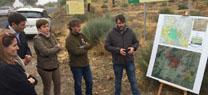Actuaciones para combatir el decaimiento del pino en la Sierra de Baza