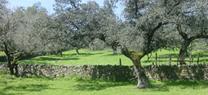 Sierra de Aracena y Picos de Aroche celebra el Día Europeo de los Parques con una jornada escolar en Aracena