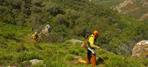 La Junta destina 54,5 millones del Programa de Desarrollo Rural a proyectos de prevención de incendios forestales