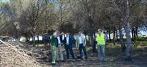 La Junta realiza tareas de prevención de incendios forestales en 1.560 hectáreas de montes públicos de la provincia de Cádiz