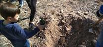 La Junta organiza una actividad familiar de plantación de arbustos autóctonos en el Parque Natural Sierra María-Los Vélez