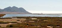 La Junta programa dos rutas por `Loma Pelada¿ y `Las Salinas¿ en el Parque Natural Cabo de Gata-Níjar para los días festivos