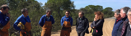 Medio Ambiente invierte 6 millones de euros en actuaciones silvícolas en áreas forestales de seis provincias de la comunidad