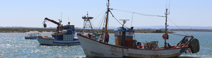 La Junta rechaza el dragado propuesto por Gobierno central por poner en peligro la economía de miles de familias del Golfo de Cádiz