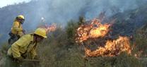 La Junta autoriza prórrogas para quemas forestales y agrícolas en el mes de mayo en Jaén debido a la climatología favorable