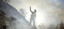 Responsables de la Junta informan a empresas forestales y propietarios de fincas de las ayudas de prevención de incendios