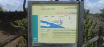 La Junta celebra el Día Europeo de la Red Natura 2000 con una jornada familiar en la Laguna del Portil